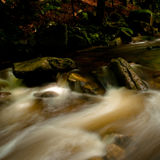 fleuve sauvage Image libre de droits