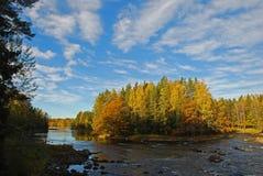 Fleuve suédois en automne Photographie stock