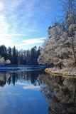 Fleuve suédois en hiver   Photographie stock