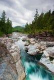 Fleuve sur le passage de Sutton, île de Vancouver photographie stock libre de droits
