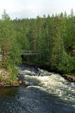 Fleuve sur Oulanka Photos libres de droits