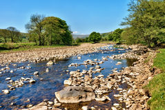 Fleuve Swale, Yorkshire, Angleterre Photographie stock