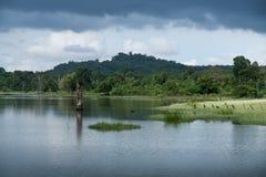 Fleuve tranquille d'été Images libres de droits