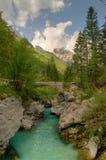 fleuve vert Photos libres de droits