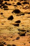fleuves d'or de couleur images stock