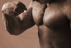 Flex of a bicep Stock Images