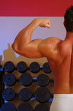 Flex in the gym Royalty Free Stock Photos