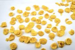 Flexión del maíz Fotografía de archivo libre de regalías