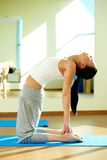 Flexibility Royalty Free Stock Photos