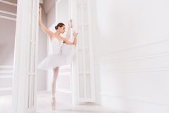 Flexible ballerina posing in dancing class. Light studio. Professional serious female wearing white leotard with tutu stretching her leg while using doors in the Royalty Free Stock Photos