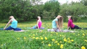 Flexible ladies stretch bodies in Half Pigeon yoga poses