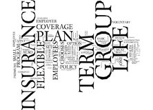 Flexible Plan Of Group Term Life Insurance Text Background Word Cloud Concept Royalty Free Stock Image