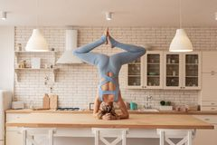 Flexible and strong young yoga master showing her outstanding skills stock photo