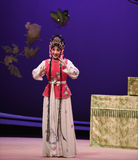 """Flexible wit-Kunqu Opera """"the West Chamber"""" Royalty Free Stock Photography"""