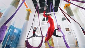 Flexible women air gymnasts makes a gymnastic elements in the air in studio. Slow motion stock footage