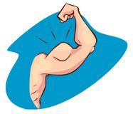 Flexing Muscle of Strong Arm/Bicep. A vector illustration of Flexing Muscle of Strong Arm/Bicep Stock Image