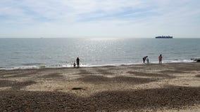 Flexistowe, Англия, Великобритания - 28-ое августа: взгляд солнечного дня людей enjoing великобританское взморье на Flexistowe видеоматериал