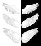 Flügel. Vektorabbildung Lizenzfreie Stockfotos