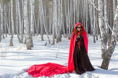 Flicka bunden för ögonen på vinter Arkivfoto