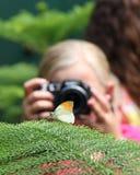 Flicka & fjäril arkivbilder