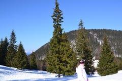 Flicka i bergen i vinter Fotografering för Bildbyråer