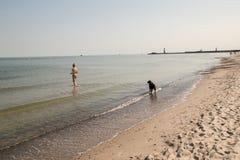 Flicka i bikinin som spelar med hennes hund på stranden royaltyfri foto