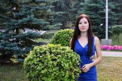Flicka i blå och dekorativ buske Royaltyfri Bild