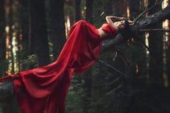 Flicka i den röda klänningen i skogen Arkivfoto