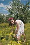 Flicka i den sura körsbärsröda fruktträdgården som tar blommor Royaltyfria Bilder