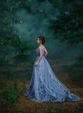 Flicka i en lång klänning som irrar skogen i dimman royaltyfria bilder