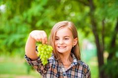 Flicka i en plädskjorta och jeans som rymmer en grupp av grön druvanärbild Begrepp av att skörda en koloni av druvor och en flick royaltyfri fotografi