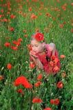 Flicka i en röd klänning på lukta för vallmofält blommor Royaltyfria Foton