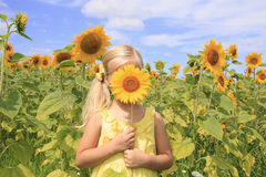 Flicka i ett fält av ljusa solrosor Royaltyfri Bild