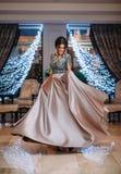 Flicka i ett lyxigt, aftonklänning fotografering för bildbyråer