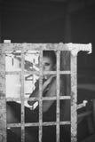 Flicka i ett monokromt filmfoto för bur royaltyfria bilder