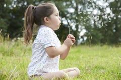 Flicka i fält som blåser frö från maskrosen fotografering för bildbyråer