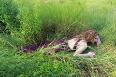 Flicka i gräset royaltyfria bilder