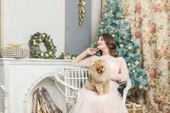Flicka i klänning med den lilla hunden på julgranen royaltyfri foto