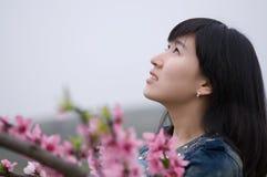 Flicka i persikaträdgård arkivfoton