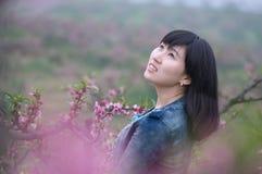 Flicka i persikaträdgård royaltyfri foto