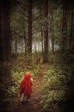 Flicka i skog Arkivfoto