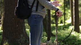 Flicka i skogen arkivfilmer