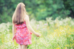 Flicka i sommarfält Royaltyfria Foton