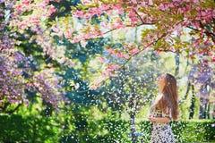 Flicka i trädgård för körsbärsröd blomning på en vårdag Fotografering för Bildbyråer