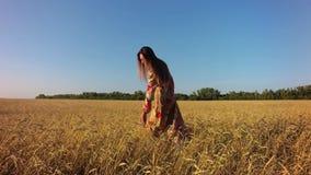 Flicka i vetefält stock video