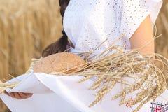 Flicka i vetefält Royaltyfri Fotografi