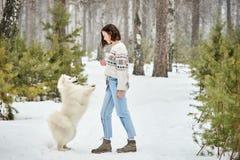 Flicka i vinterskogen som går med en hund Snow faller arkivbild
