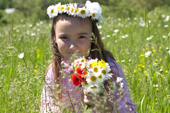 flicka little äng Arkivfoto