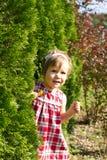 flicka little natur royaltyfri foto