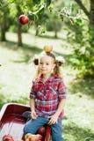 Flicka med Apple i den Apple fruktträdgården Arkivfoto